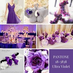 Look how many ways you can pull together this pretty purple in your petals!