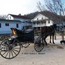 Afternoon Road Trip to Cashton's Amish Community: Read this and other Wisconsin Dells stories by travelers at IgoUgo. Get great tips for traveling in Wisconsin Dells, Wisconsin, too. - IgoUgo