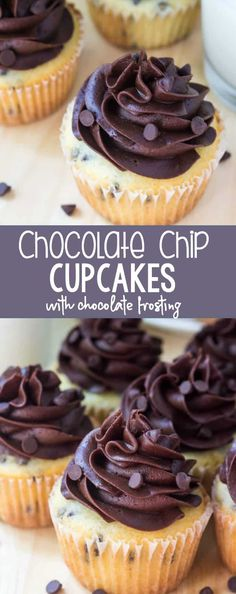 Chocolate Chip Cupcakes with Chocolate Frosting - Oh Sweet B.-Chocolate Chip Cupcakes with Chocolate Frosting – Oh Sweet Basil Chocolate Chip Cupcakes with Chocolate Frosting - Mini Desserts, Just Desserts, Delicious Desserts, Dessert Recipes, Plated Desserts, French Desserts, Chocolate Frosting Recipes, Chocolate Buttercream, Buttercream Frosting