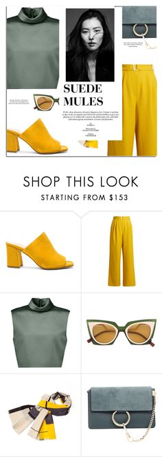 """Suede Mules"" by djinam ❤ liked on Polyvore featuring Maryam Nassir Zadeh, TIBI, Fendi, Infinity, Chloé and country"