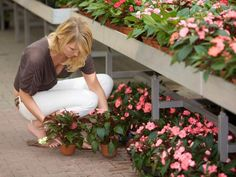 Get your gardening fix without breaking the bank.