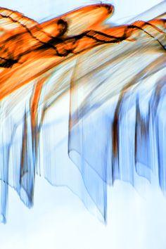 Inverted Reflection Abstract 292  By Craig Royal. #art #interiordesign #abstractart