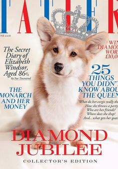 The Queen's corgi on the front cover of the Diamond Jubilee edition of UK Tatler Magazine.