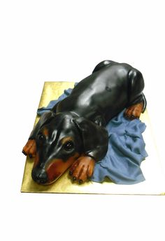 Libby's 3D Sculpted Cakes--It's a weenie dog...too cute