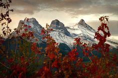 Three Sisters Mountains, near Canmore, Alberta. My grandmother's favorite.