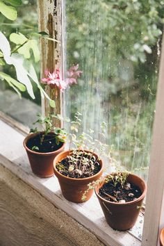 Photo Journal: Sweden   The Future Kept - Terracotta plant pots on the window sill