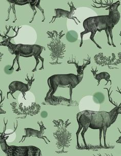 Antlers Pattern (Green)