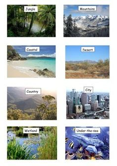 12 card sized realistic environment pictures with labels.