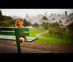 Watching the Rain Fall by kaoni701, via Flickr