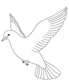 Dove Coloring Page Find This Pin And More