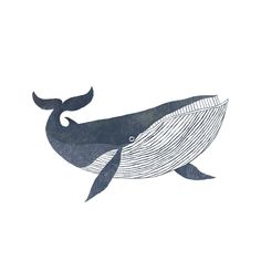 Home Decor Ideas Indian Style .Home Decor Ideas Indian Style Cute Drawings, Animal Drawings, Whale Drawing, Whale Sketch, Whale Illustration, Art Aquarelle, Animal Paintings, Sketches, Drawing Tips
