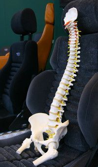 Traveling with Back Pain--7 Tips to Alleviate Back Pain on Your Road Trips