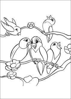 Bird animal printing pages coloring pages gallery