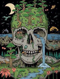 Illustration animals trippy psychedelic skull nature forest sea illusion art print Surreal Art black pen artprint deadhole on paper Art And Illustration, Illustration Animals, Art Illustrations, Trippy Drawings, Art Drawings, Arte Inspo, Photographie Street Art, Vexx Art, Psychadelic Art