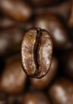 A single coffee bean floating over a background of blurred coffee beans