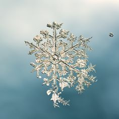 beautiful crystals of a snowflake!
