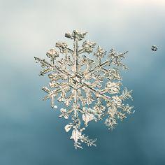 stunning snowflake