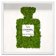 New 'Live Number 5 Moss' Framed Textual Art by Wall Art Decor. Fashion is a popular style Moss Wall Art, Moss Art, Wall Art Decor, Faux Grass, Chanel, How To Preserve Flowers, Outdoor Plants, Paris, Art Of Living