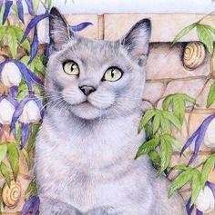 Art Of Debbie Cook | Debbie Cook_ Кошки