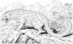 Or Does Your Child Take An Interest In Wild Animals? If Yes, Introduce  These 10 Jaguar Coloring Pages