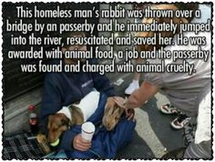 Homeless man saved his pet rabbit from actions of a cruel passerby.