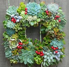How to Make a Living Succulent Wreath #Succulent #Wreath