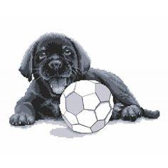 Cross stitch kit - Labrador - Play with me Stitch Kit, Cross Stitch Patterns, Labrador, Play, Sewing, Canvas, Prints, Fun, Color