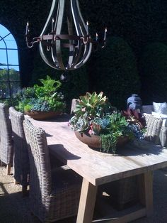 wonderful bowls of succulents sitting on simple wooden table with wicker chairs + love the iron chandelier!