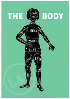 Parts of the Body - Teaching Poster Vocabulary for ESL & EFL students and TESOL / TEFL.