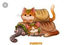 Food burrito