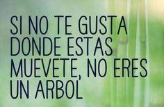 Quotes About Moving On In Spanish Words Ideas The Words, More Than Words, Spanish Words, Spanish Quotes, Spanish Posters, Favorite Quotes, Best Quotes, Funny Quotes, Quotes Pics