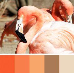 Same bird, different color palette ...