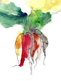 Just Picked Rainbow Carrots Watercolor & Ink Drawing Vegetable Garden by Olga Tenyakova / Fine Art Print x Watercolor And Ink, Watercolor Paintings, Watercolor Ideas, Watercolors, Carrot Drawing, Rainbow Garden, Garden Drawing, Aesthetic Painting, Food Art