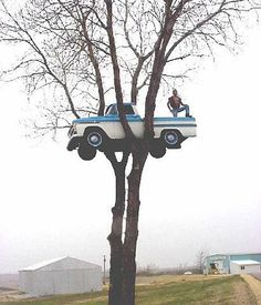 This truck turned into a tree house was created by Mark Madson for his son in Beloit Wisconsin. It seems as if the tree was made to hold . Trippy Pictures, Weird Pictures, Smosh, Tree Trunks, Double Take, Photo Tree, Unique Cars, Old Trucks, Pickup Trucks