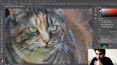 Come correggere il micromosso e lo sfocato con Photoshop