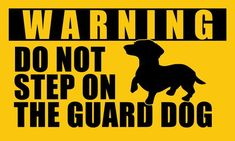 American Vinyl Dachshund Do Not Step on The Guard Dog Sticker (Doxie Funny bo-dach weener Weiner Wiener) Dachshund Funny, Mini Dachshund, Dachshund Puppies, Funny Dogs, Funny Dachshund Pictures, Vintage Dachshund, Dapple Dachshund, Dachshund Gifts, Daschund