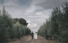 ADORO // Rustic Wedding // Olive grove