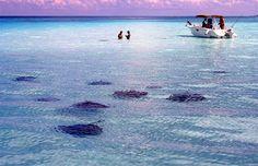 Grand Cayman Caribbean #CheapCaribbean #CCBucketlist
