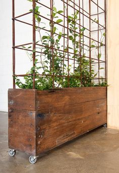 Planter on castors from reclaimed wood.