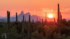 Purple Hues, Arizona, Celestial, Mountains, Sunset, Nature, Travel, Outdoor, Landscapes