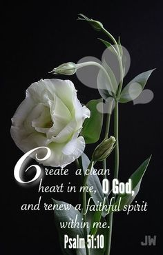 Psalm : 51:10 KJV.....Create in me a clean heart, O God; and renew a right spirit within me.