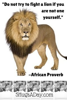 Shih Tzu Facts you may not know. 20 interesting facts about the shih tzu plus slide show of shih tzu images. African Poems, African Quotes, Wise Proverbs, Proverbs Quotes, Babe Quotes, Wisdom Quotes, Best Kindle, Lion Love, African Proverb