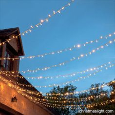 Warm white outdoor patio lights for sale | iChristmasLight Warm White Fairy Lights, Outdoor Fairy Lights, Led Fairy Lights, Solar Lights, Garden Fairy Lights, Solar Lanterns, Patio Lighting, Tree Lighting, Lighting Ideas