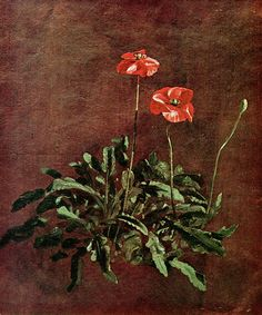 Study for poppies  - John Constable