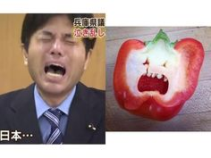 【画像】 野々村県議がパプリカにそっくりだと話題に Funny Laugh, Hilarious, Royal Photography, Feeling Sad, Look Alike, Blue Wedding, Funny Photos, Vows, Laughter