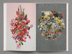 'Strange Plants' Looks At Plants and Their Relationship To Contemporary Art