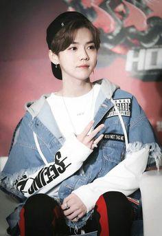 Luhan Exo Most Famous Images Luhan Exo, Tao Exo, Kris Wu, Chen, Exo 12, Kim Minseok, Exo Members, Chinese Boy, Kpop