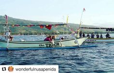 #Repost @wonderfulnusapenida with @repostapp  Fish release around Lovina protected marine area  during on Lovina Festival #lovinafestival2016 #wonderfulindonesia  #ayoberwisata #pesonaindonesia