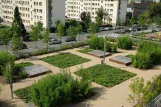 http://www.gallois-curie.fr/sites/default/files/jardin_des_bambou.jpg