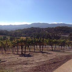 Arrowood Winery, Sonoma #travel #winecountry #vineyard
